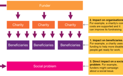 Big Donors e Theory of Change: un rapporto ancora debole